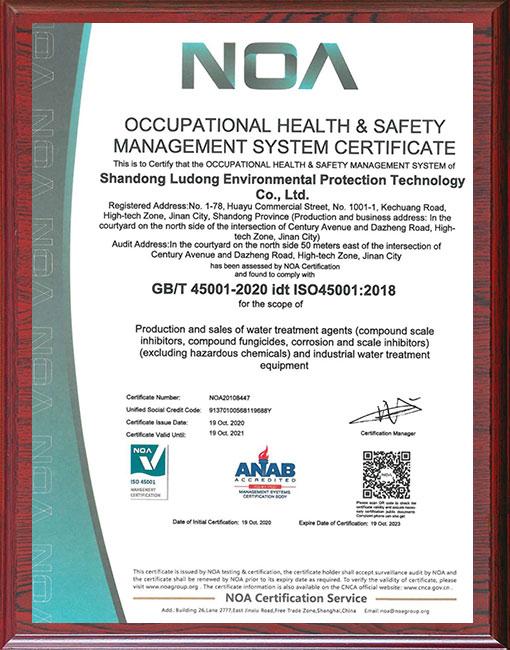 缓蚀阻垢剂厂家-环境管理体系证书EN